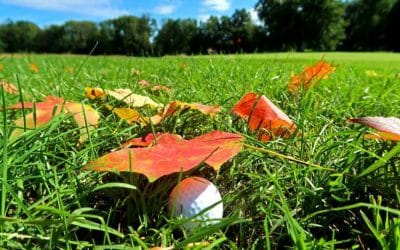 Golf Course Superintendent News – October 2020