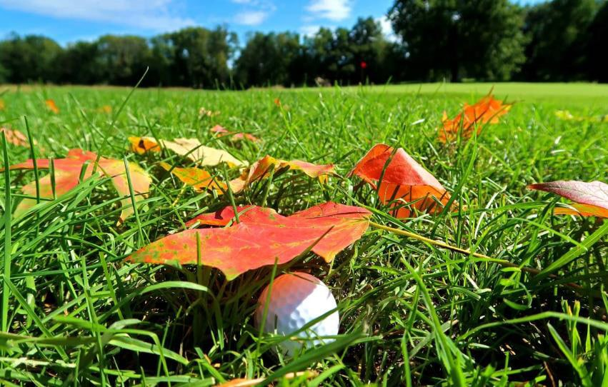 Golf Course Superintendent News – October 2020
